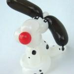 Ballonhund Dalmatiner Welpe